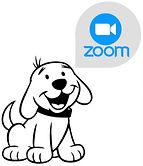 Zoom-Mittwoch