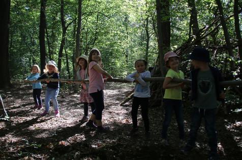 Exkursion in den Steigerwald