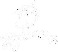 Sketch PNG3.png