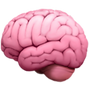 Brain%20Emoji%20(1)_edited.png