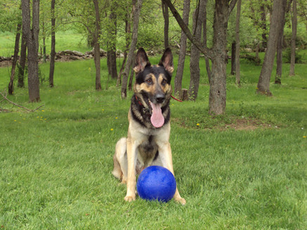 Chaos with Ball
