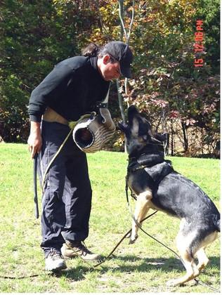Emma Training bark 101606.jpg