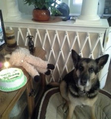Emma Celebrates 12th Birthday