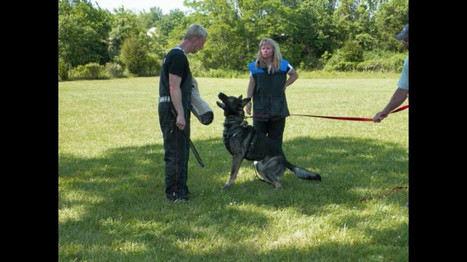 Teaching Bark and Hold