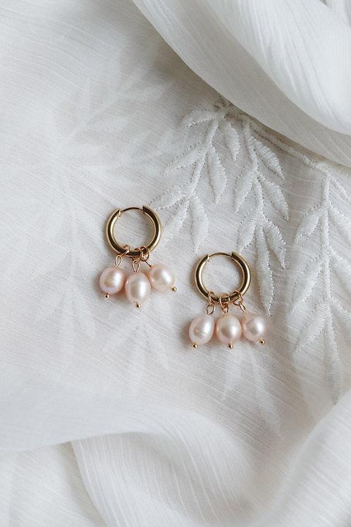 Rose Blush Earrings