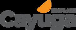 Cayuga Displays logo.png