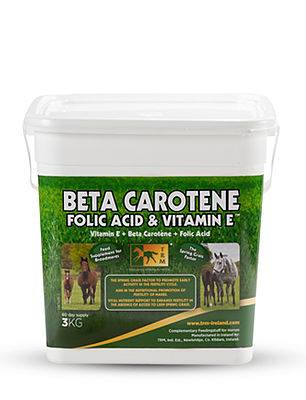 Beta Carotene Folic Acid & Vitamin E