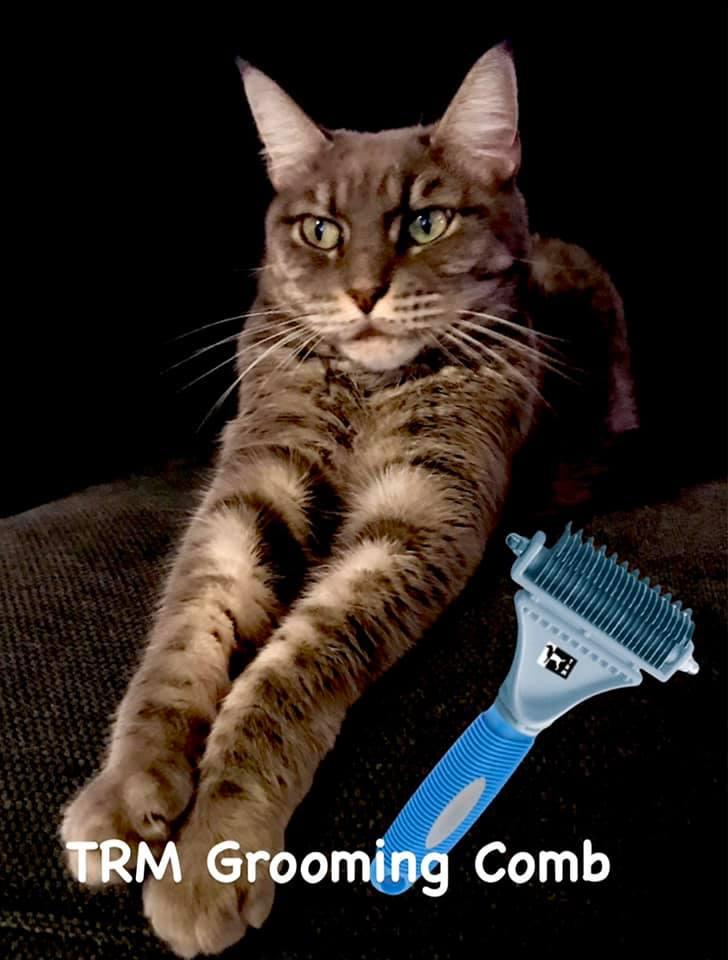 Pflegekamm für alle Rassen und Mäntel TRM's Grooming Comb macht das Fell voll und gesund. Auch für H
