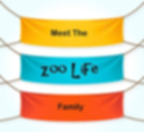 Meet The Family Banner.jpg.opt626x576o0,