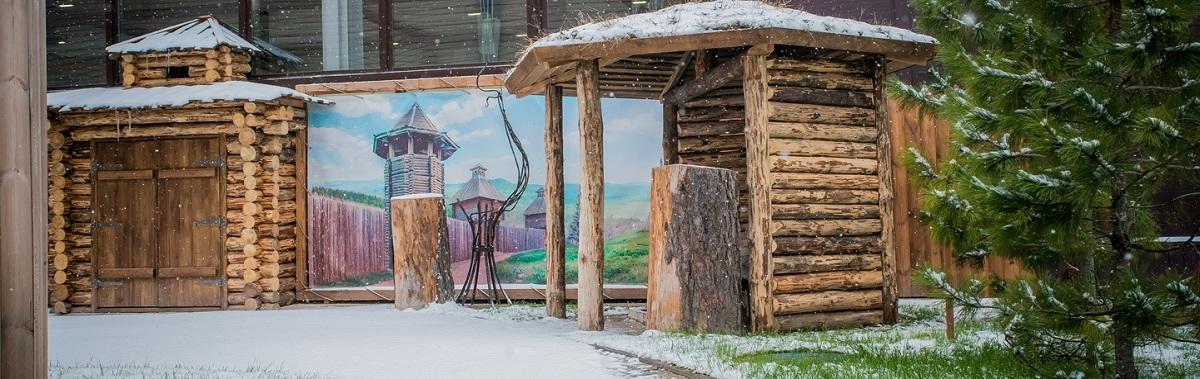 Аировка_первый снег