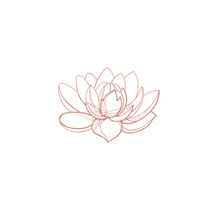 Nymphaea Heal-5.png