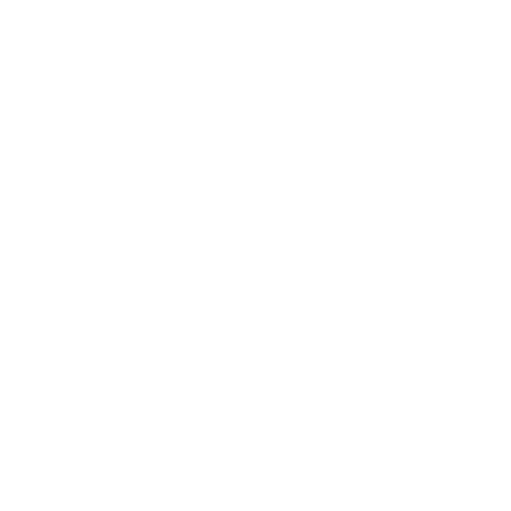 Nymphaea Heal-4.png