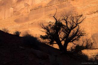 Arches National Park dans l'Utah
