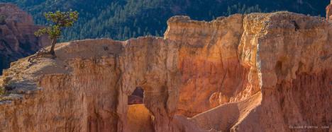 Bryce Canyon dans l'état de l'Utah