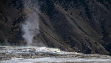 Région de Mammoth Hot Springs du parc national de Yellowstone