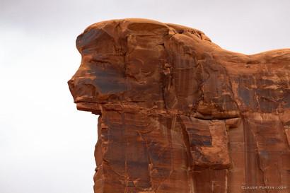 Tête de bélier, sculpture naturel fait par la nature. Elle est visible dans le haut d'une immense colonne de pierre du Arches National Park dans l'Utah
