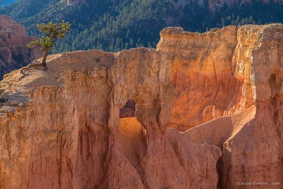 Bryce Canyon National Park dans le Sud de l'Utah