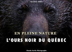Ours noir du Québec