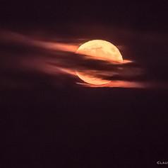Lever de la super lune du 14 novembre