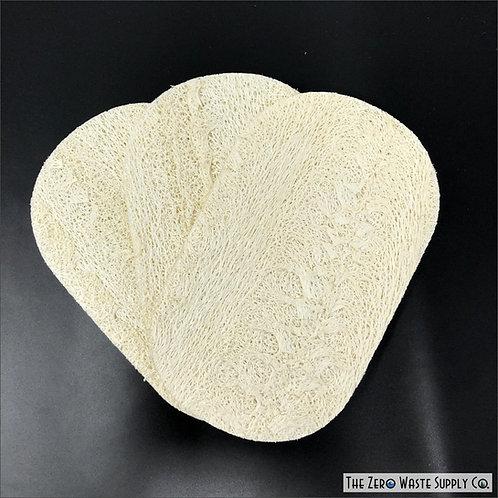 3 Pack Dish Sponge