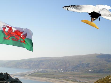 Gordon Battle censured for trip to Welsh chip shop