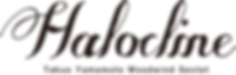 halocline2_logo_ol.png