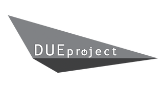 DUE project Architecture