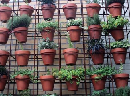 Boring Terra Cotta Pots??? I Say No More!