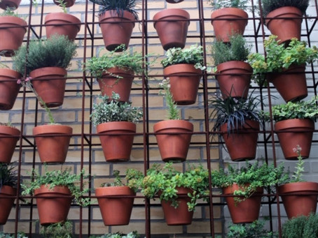 Boring Terra Cotta Pots??? I Say No More!
