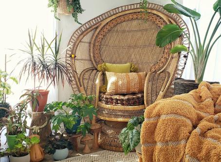 My Favorite Online Plant Stores! Part 2