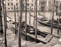 Moored Gondolas, Venice