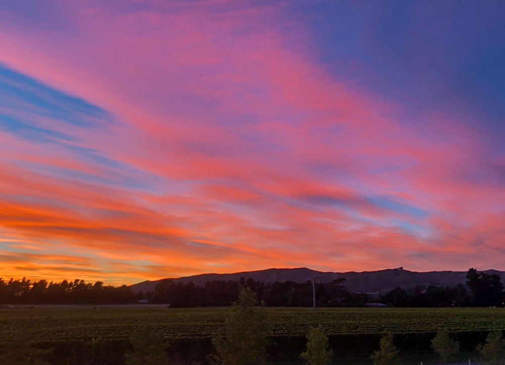 sunset and pink neon skies over vineyards in marlborough blenheim south island new zealand, golden hour, sky porn, cloud porn, exploring new zealand, kia ora, kiwi life