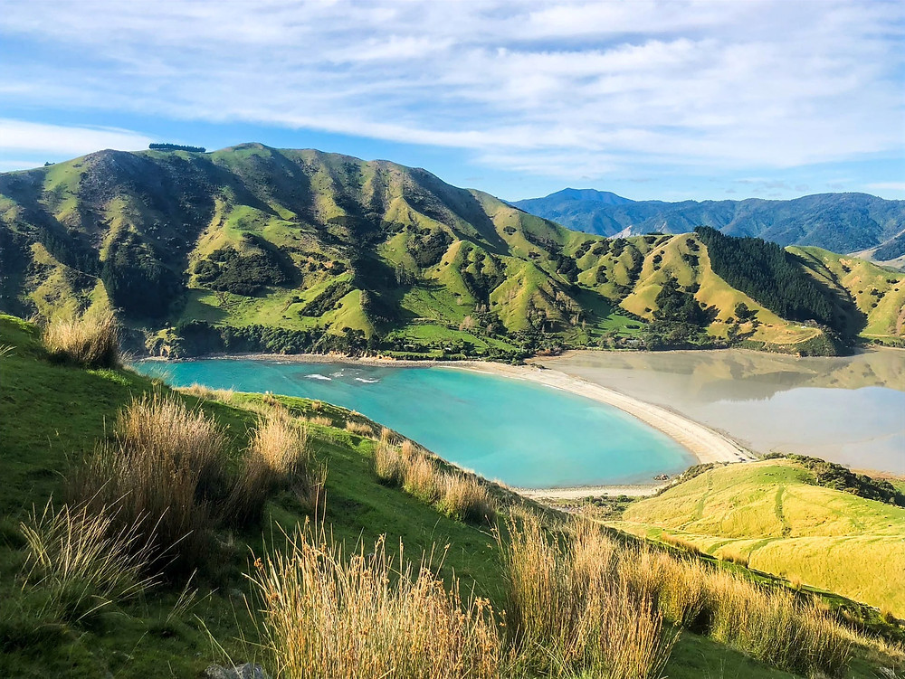 best places for photography in new zealand, views from rotokura cable bay tramping track, south island, photo of the day, travel photographer, travel blogger