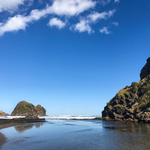 lion rock, history of lion rock in new zealand