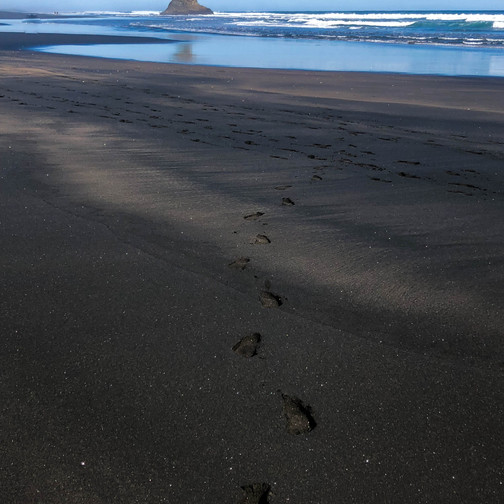 what does a black sand beach look like?