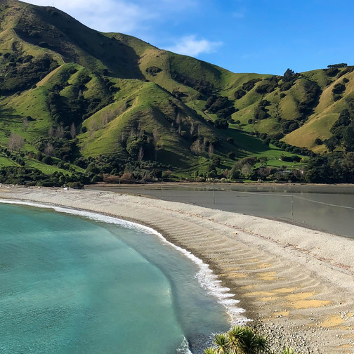 what are the hiking rules in new zealand