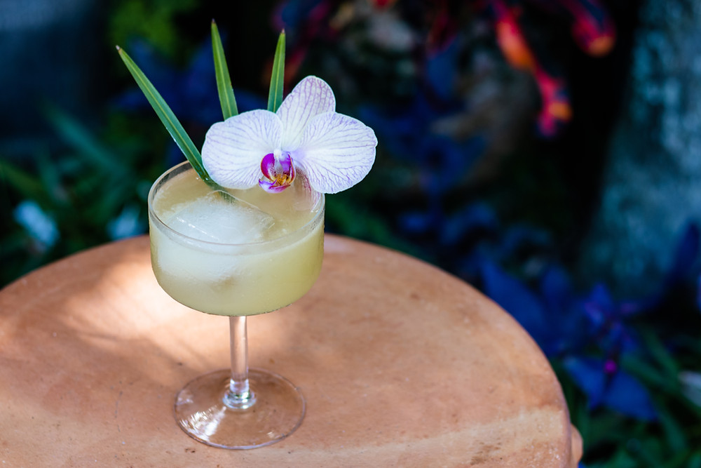 rum drink garnished with a purple and white orchid, drinks to make with rum, flor de cana, diplomatico, clement, appleton estate, coconut castle