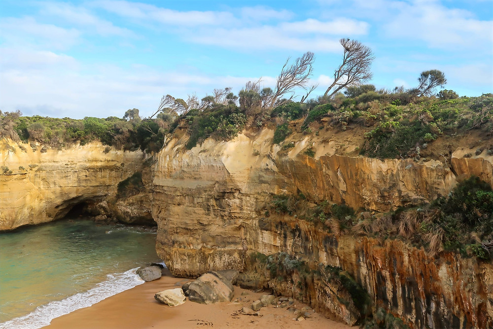 wind swept trees along the jagged cliffs of loch ard gorge in south australia along the great ocean road, australian national heritage listed