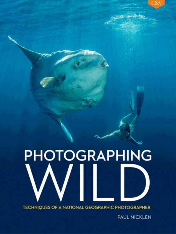 photography lessons from national geographic photographer paul nicklen