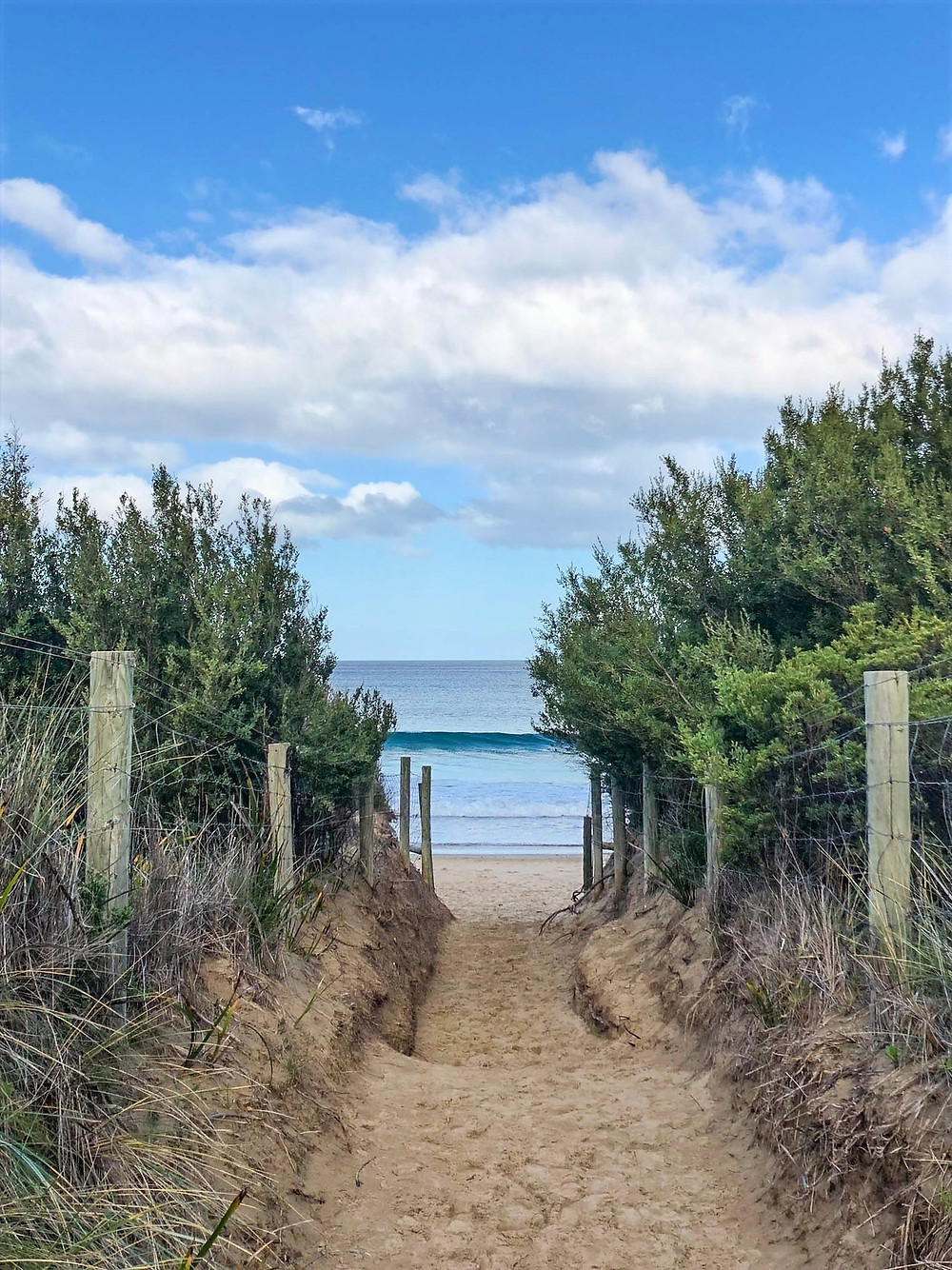 great ocean walk, what to see on australia's famous shipwreck coast, the gateway to the great ocean road, memorial arch