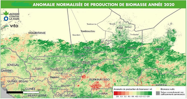 biomasse_2020.jpg