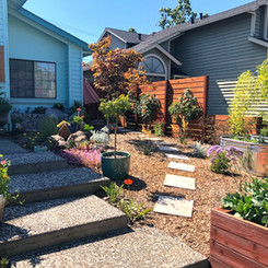 My personal show garden is a four season playground for me, that is ever evolving.