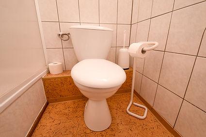 _DSC8158_Dahlenburg_Fewo_Toilette-Bad.jp