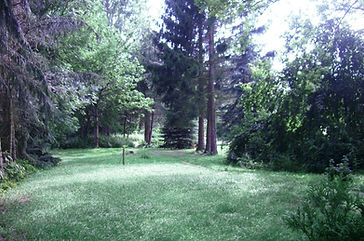 Garten_edited.jpg