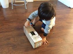 Box instrument!