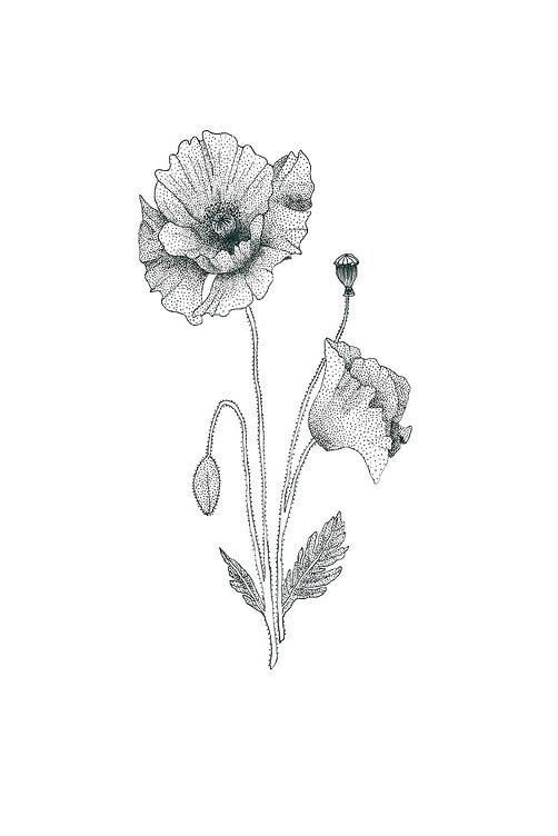 Fleur 3.jpg