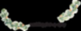 tinitwig logo RGB.png