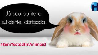Eliminação dos ensaios com animais: Por que é necessária a urgência?