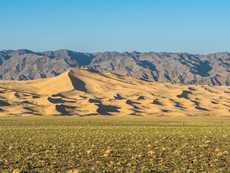 Gobi Dünen