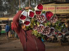 Flower Market Delhi Blumenmann